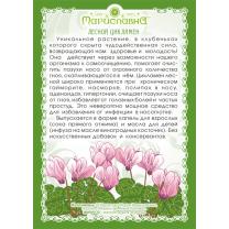 Гайморит, аденоиды у детей. Фитокомплекс №2